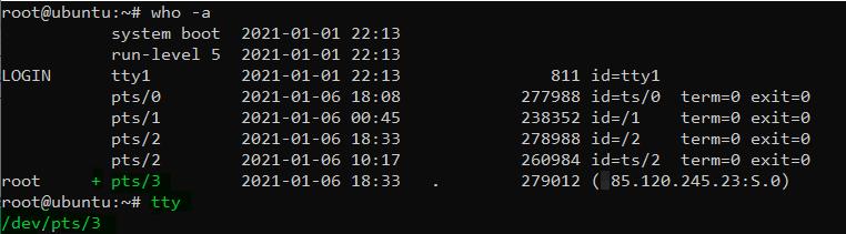 pts status write linux